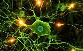 صورة تتذكر تجارب سيئة ومرعبة وتريد نسيانها.. علماء قاموا بدراسة لتخليص دماغك من الذكريات المخيفة
